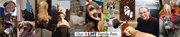 LMT Pets