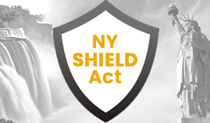 NYS Shield Act SocMed B